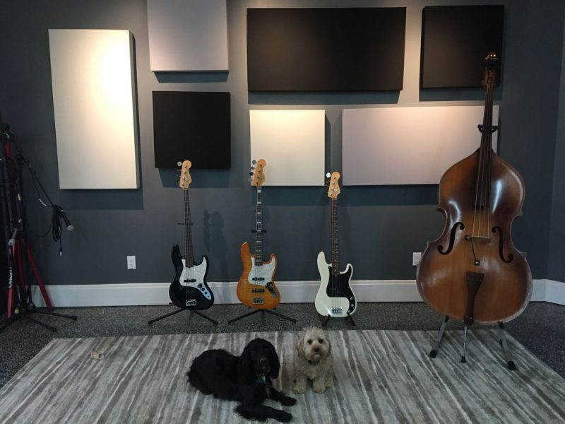 Eric Johnson GIK Acoustics Acoustic Panels with Bass and Dogs